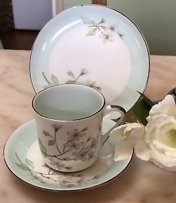 Antique  Vintage Trio Cup Saucer Plate  Csp Afternoon Royal Standard Blossom