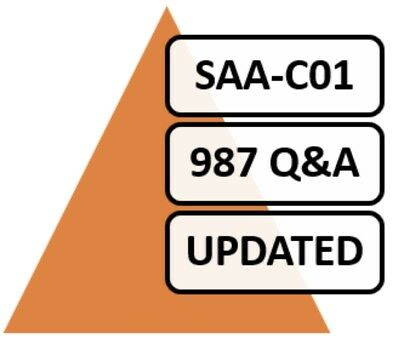 Amazon AWS Certified Solutions Architect Associate Exam, 987 Q&A, PDF FILE! NEW!