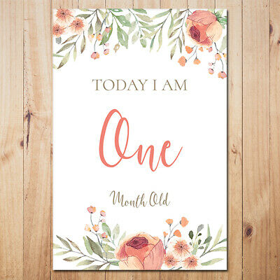 Printable Floral Baby Milestone Cards - DIGITAL FILE ONLY - 34 card set