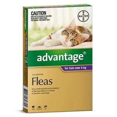 Advantage for Cats Over 4kg 1 Pack Single Long Expiry Purple