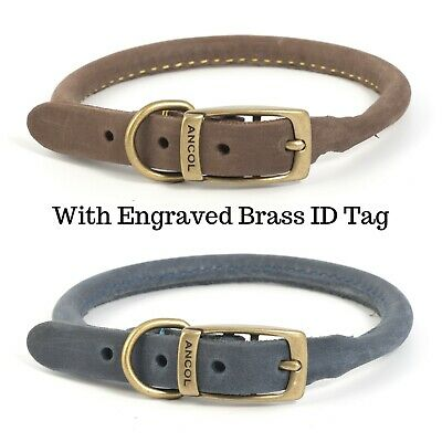 ANCOL TIMBERWOLF LEATHER ROUND DOG COLLAR (Sable or Blue) - Engraved ID Tag