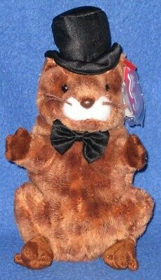 29342791333 Ty Punxsutawney Phil 2004 Groundhog Beanie Baby - Mint - Non Mint Tag - See  Pics
