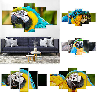 Parrot Bird Canvas Print Painting Framed Home Decor Wall Art Poster
