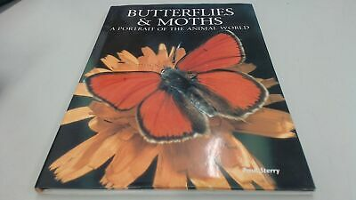 Butterflies and Moths: A Portrait of the Animal World, Sterry, Pa
