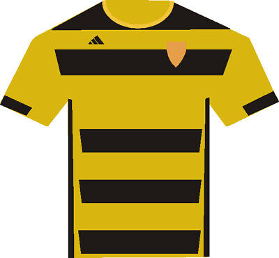 Alloa Home Kit 2018-19
