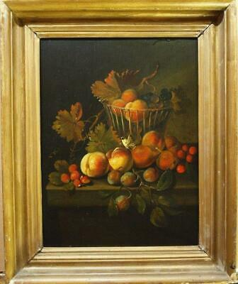 FINE 18th Century STILL LIFE FRUIT & BUTTERFLY LEDGE Antique Oil Painting