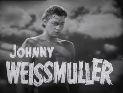Tarzan - The Complete Johnny Weissmuller Collection (12 Films) On Dvd