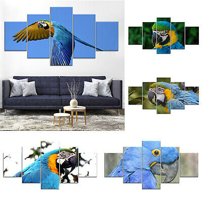 Blue Parrot Bird Canvas Print Painting Framed Home Decor Wall Art Poster 5Pcs
