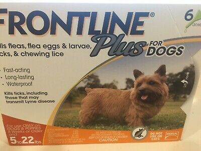 6 months FRONTLINE PLUS FLEA AND TICK CONTROL FOR DOGS 5-22 LB 6 MONTH SUPPLY