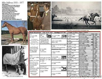 Horse Racing History SILKY SULLIVAN  Bill Shoemaker Photo Picture Pedigree