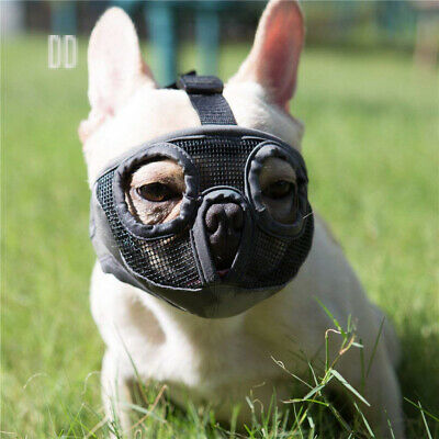 JYHY Short Snout Dog Muzzle- Adjustable Breathable Mesh Bulldog Muzzle for...