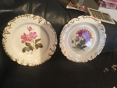 Two Porcelain 19th Century Hand Decorated Floral Cabinet Plates (169)