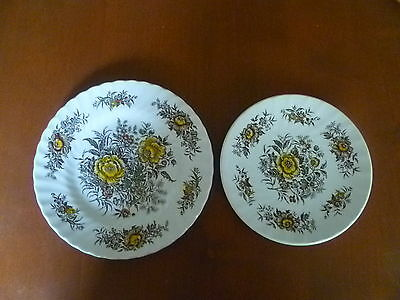 "Ironstone Staffordshire Beacon Hill  Hostess Tableware  England  7 ""Plate&Saucer"
