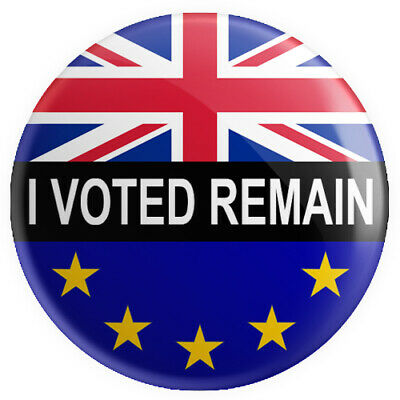 I Voted Remain BUTTON PIN BADGE 25mm 1 INCH Brexit Flag UK Europe Referendum