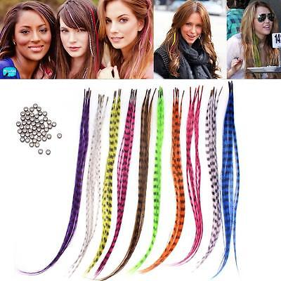 """New 50pcs Grizzly synthetic Feather hair Extensions 16"""" with 50 beads for free U"""