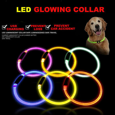 Rechargeable USB Waterproof LED Flashing Light Band Safety Pet Dog Cat Collar