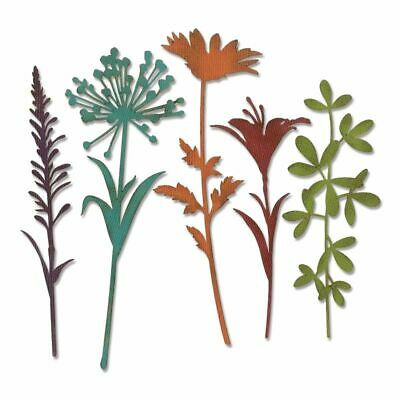 Sizzix Thinlits Stanzer Set 5tlg. - Wildflower Stems # 2 by Tim Holtz