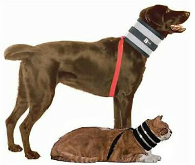 BiteNot Dog Wound Protection/Recovery Dog and Cat Collar