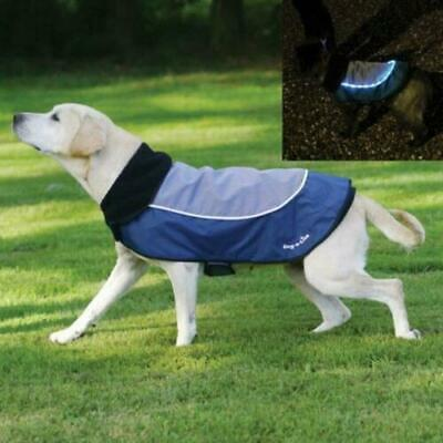 Rosewood Dog Night-Bright LED Jacket Water Resistant