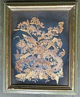 "Vintage Dried Flower Collage Framed Under Glass 8.5 x 10.5"" by Heloise N C USA"