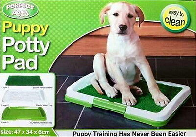3 Layers Puppy Potty Grass Mat Dog Trainer Indoor Pee Pad Training Patch Green