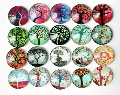5x 20mm Glass Dome Flat Back Cabochon Brooch jewelry Pendant Tree of Life Garden