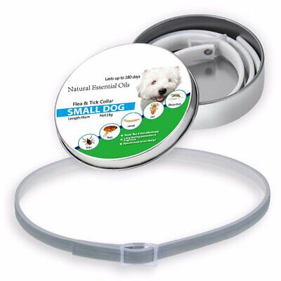 NEW Adjustable Flea and Tick Collar Small Medium Large Dogs 8 Month Protection