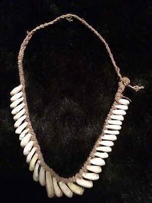 Very Old Kina Trade Shell Necklace: Papua New Guinea