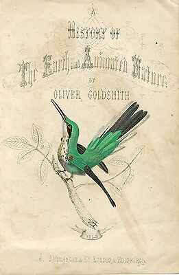 birds. History of the Earth and Animated Nature Oliver Goldsmith