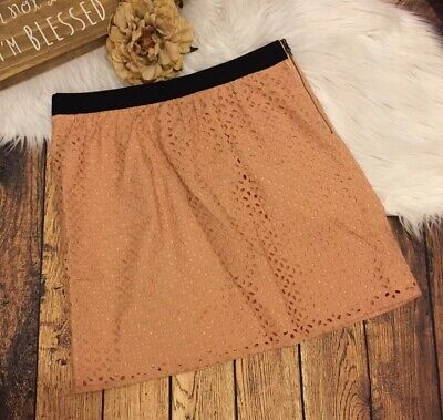 e249897d66 ANN TAYLOR LOFT size 8 BLUSH PINK EYELET EMBROIDERY LINED STRAIGHT SKIRT