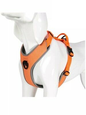 Truelove No Pull Dual Clip Padded Dog Harness  Orange Size M