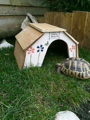 large tortoise house