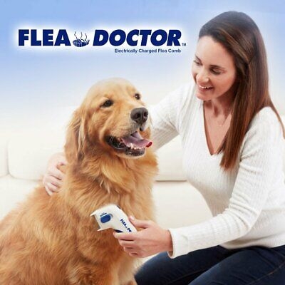 Flea Doctor Electric Flea Comb-Great for Dogs & Cats! Official Bulbhead Product