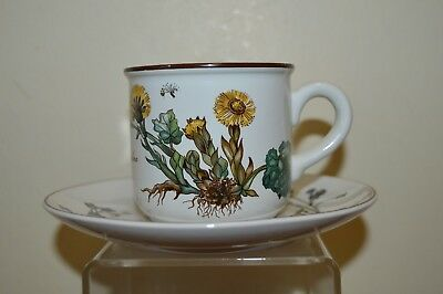 Villeroy & Boch Botanica 7.5 cm Coffee Cup and Saucer - Brown Back Stamp