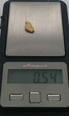 Gold Nugget 0.54g.
