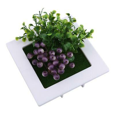 Creative Pastic Picture Home Hanging Decoration Flower Plant Frames 3D Plants JA