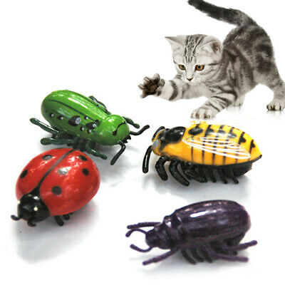 Pet Cat Toys Teaser Interactive Mini Beetle Cicada Auto Electric Walking Insect