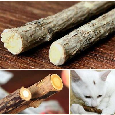 Natural Wood Cat Stick Chew Toy Dental Health Kitten Brush Teeth CS