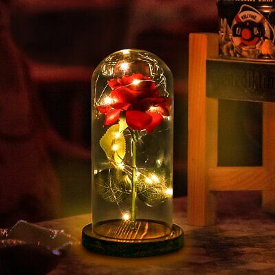 Beauty And The Beast Enchanted Rose Glass LED Lighted Wedding Home Decor Gift US