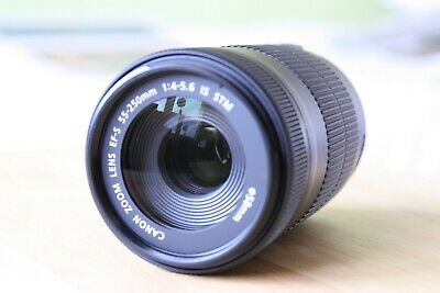 Canon EF-S 55-250mm F/4-5.6 STM IS Zoom Lens