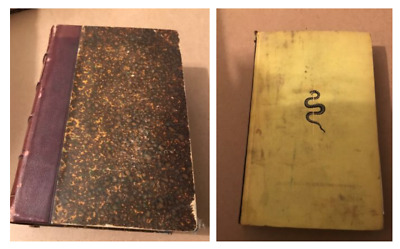 Lot of two antique medical books. French and German.