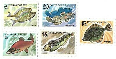 5 Fish Postage Stamps From Russia