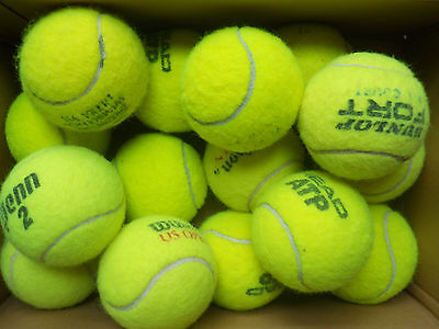 20 Used Tennis Balls, Wilson, Dunlop, Head etc - Great Dog Toys
