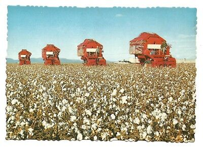 QLD - c1970s POSTCARD - PICKING COTTON WITH MECHANICAL HARVESTERS, ST GOREGE
