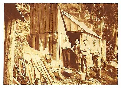 NSW - c1970s POSTCARD - REPRODUCTION 1900s MINER'S DWELLING, CENTRAL TILBA, NSW