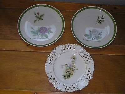 Vintage Lot of Hutschenreuther Germany Pink & White Rose Botanical Flower Plates