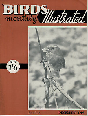 Birds Illustrated Monthly Magazine 1959 December Winter Waders  2662F