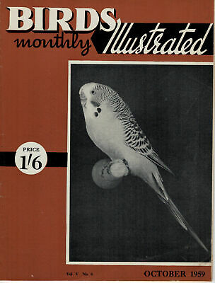 Birds Illustrated Monthly Magazine 1959 October Clearwing Budgies Owls  2660F