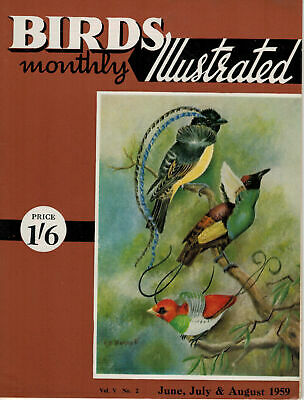 Birds Illustrated Monthly Magazine 1959 June Peregrine Increase Coot 2658F