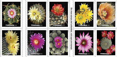 2019 55c Blooming Cactus Flowers, Booklet Block of 10 Scott 5350-5359 Mint VF NH